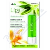 LIPS stick VANILLA 3.8g