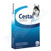 Cestal Plus 50mg/144mg/200mg pro psy tbl.8