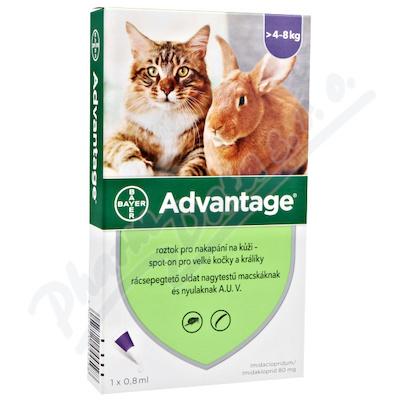 Advantage velké kočky a králíky spot-on 1x0.8ml